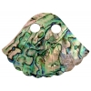 Pendent Abalone Fan